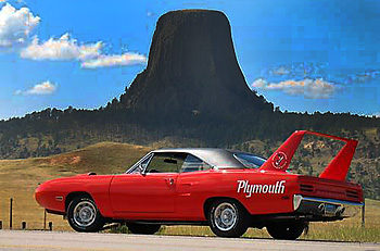 Superbird for Sale